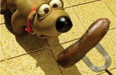 Ponpon-un-chien-parmi-les-humains-X