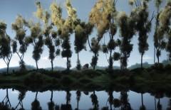 Raym reflet lac